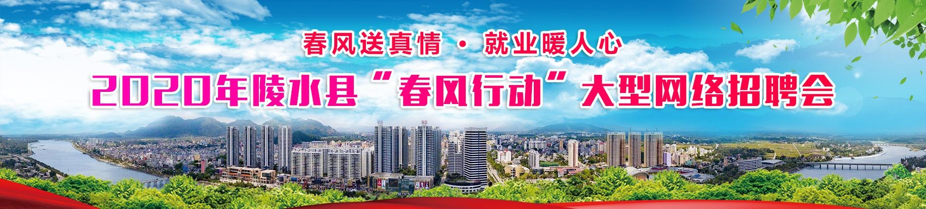 """2020年陵水县""""春风行动""""大型网络招聘会,春风送真情,就业暖人心"""