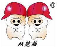 阳江双胞胎猪业有限公司